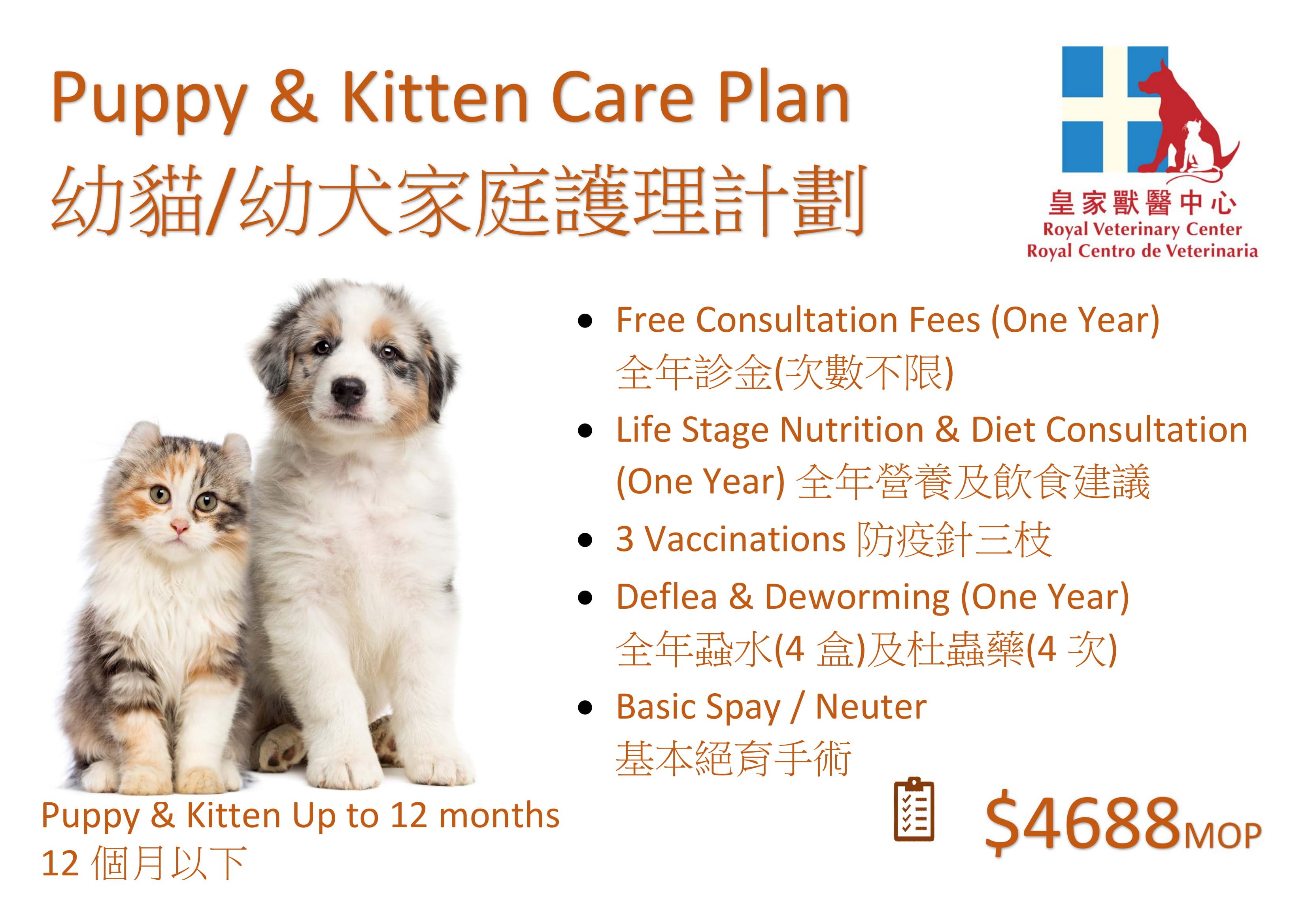 Puppy & Kitten Care Plan-1