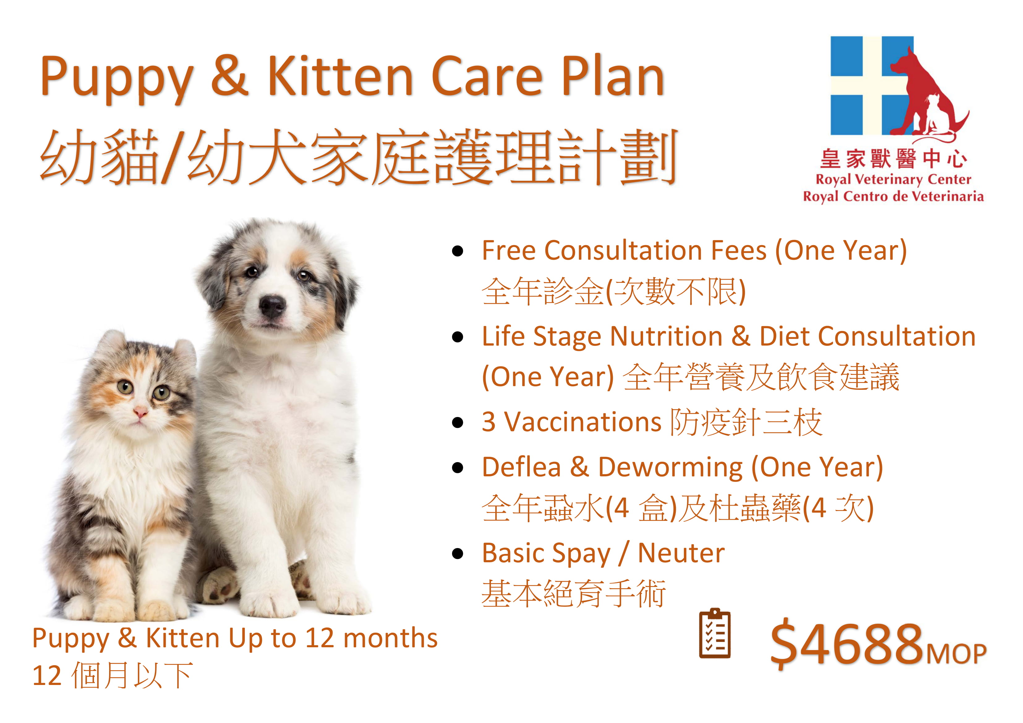 Puppy & Kitten Care Plan-1